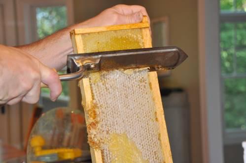 honeyharvest3