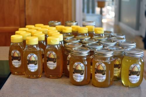 honeyharvest6